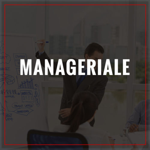 Percorso Manageriale